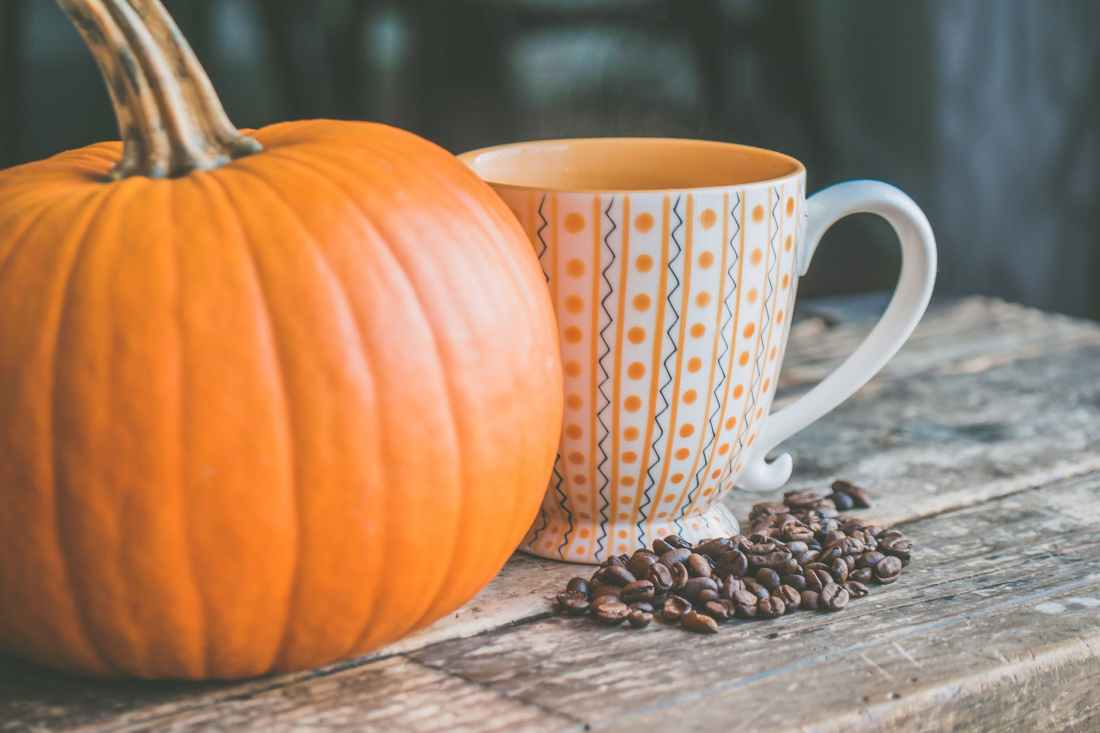 orange pumpkin near white ceramic mug with seeds