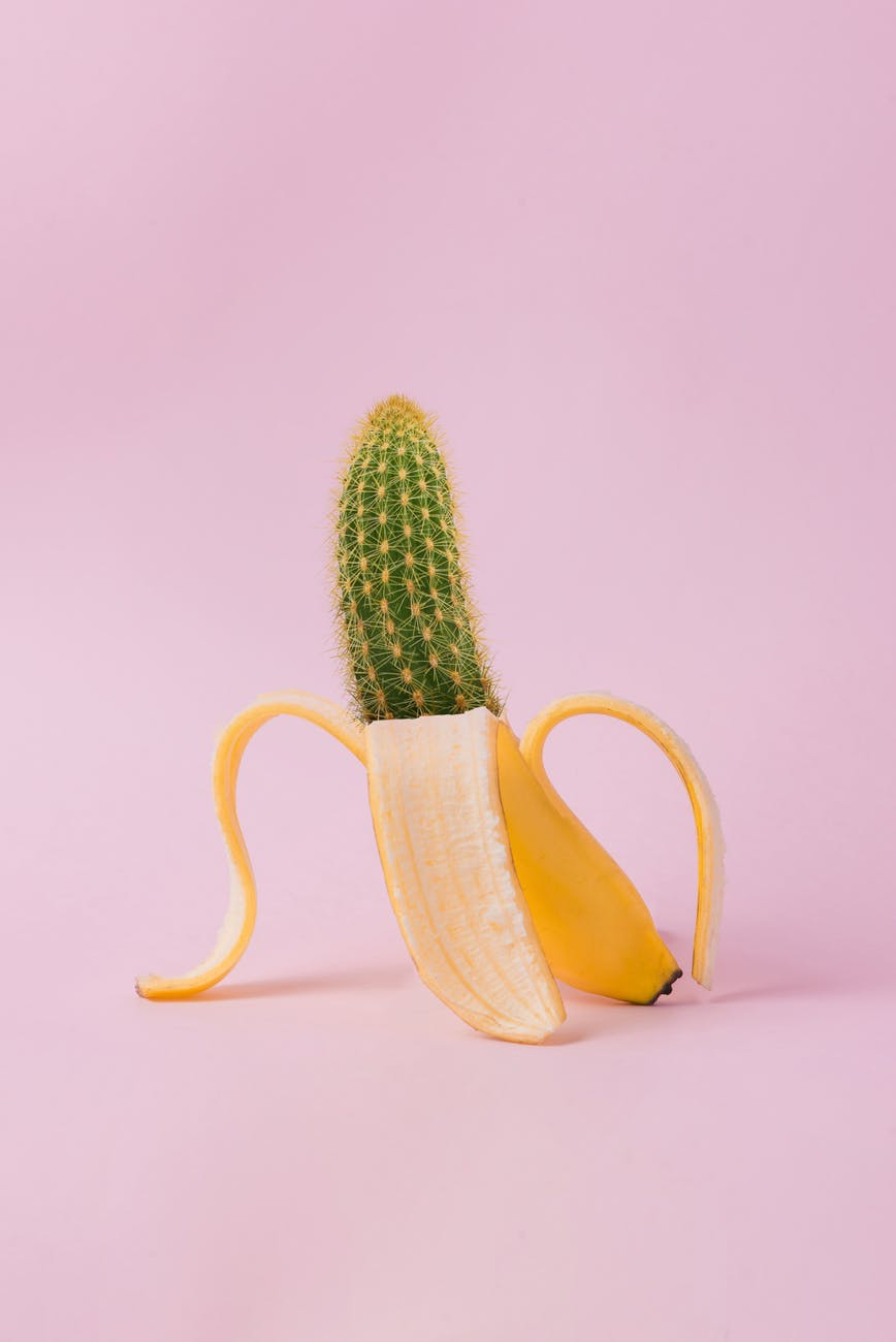edited photo of banana and cactus